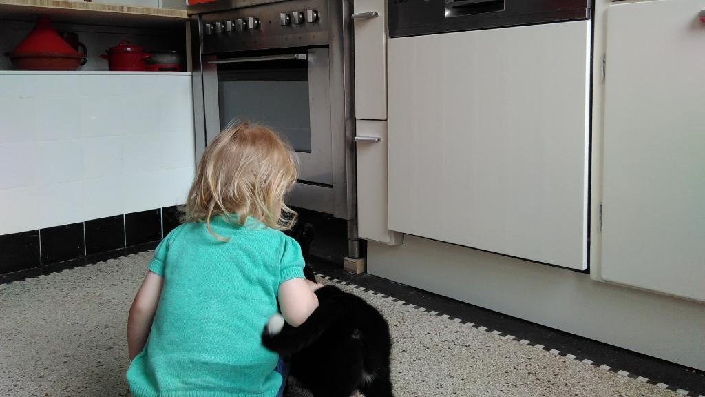 Vintage keuken met meisje en kat.